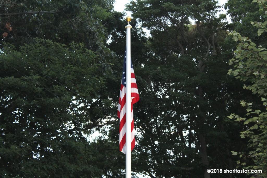 AmericanFlagTrees.SharitaSt